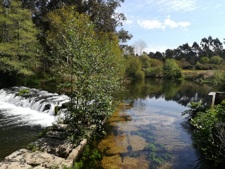 BioNeiva: na corrente do Rio Neiva